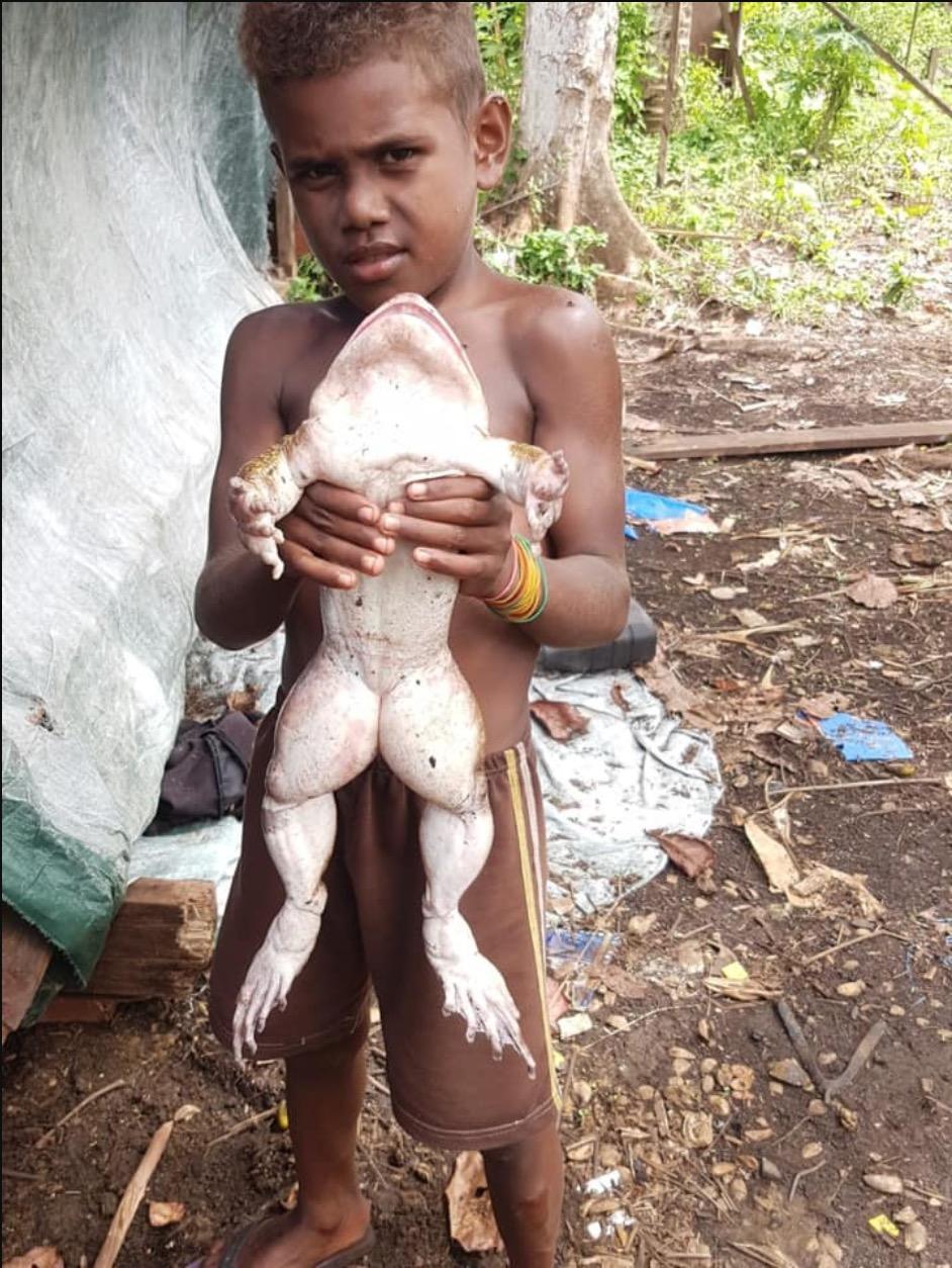 Lelaki Terkejut Jumpa Katak Sebesar Bayi Manusia, Penduduk Kampung Kata Katak Ini Lagi Sedap Dari Ayam